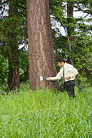 Mixed race businessman in tall grass near a tree about to plug in an electrical cord to a electrical receptacle on the tree.