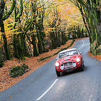 Car 30 David Stanley / Bernard Northmore