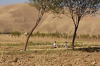 26 SEP 2004, FEYZABAD/AFGHANISTAN:<br /> Kinder auf einem Feld in der Landschaft von Nord Afganistan, in der Naehe der Stadt Feyzabad<br /> IMAGE: 20040926-01-028<br /> KEYWORDS: Faisabad, Reise, Steppe, trocken