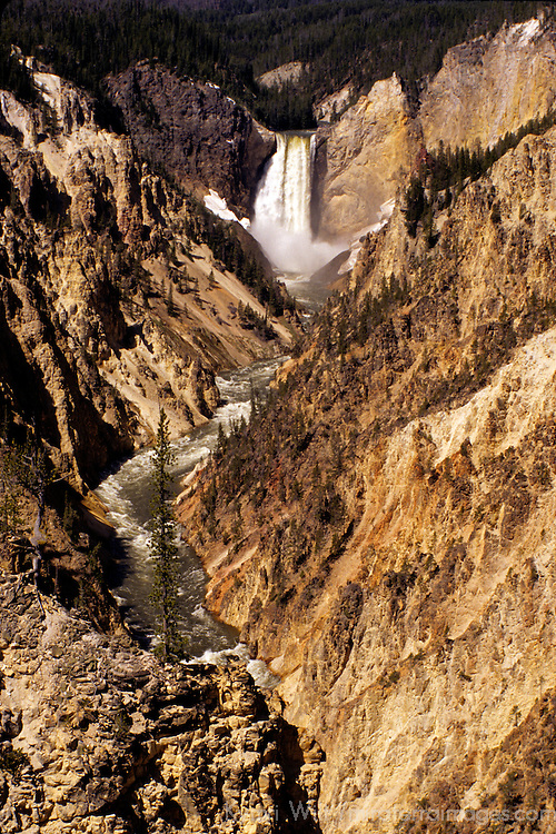 North America, USA, United States, Wyoming, Yellowstone National Park. THe Grand Canyon of the Yellowstone.