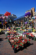 Image of a flower and balloon market outside Quincy Market along the Freedom Trail in Boston, Massachusetts, New England