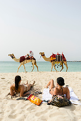Tourist camel ride on beach at Marina district of New Dubai in United Arab Emirates