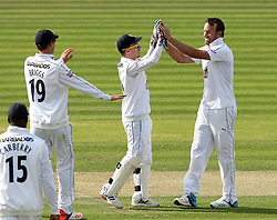 Hampshire's Sean Ervine celebrates taking the wicket of Somerset's Peter Trego with Hampshire's Adam Wheater - Photo mandatory by-line: Robbie Stephenson/JMP - Mobile: 07966 386802 - 21/06/2015 - SPORT - Cricket - Southampton - The Ageas Bowl - Hampshire v Somerset - County Championship Division One