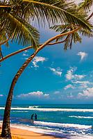 Fishing, Akurala Beach, south coast of Sri Lanka.