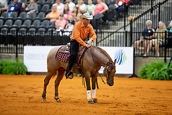 Pouls Jurgen, NED, Royal Jac<br /> World Equestrian Games - Tryon 2018<br /> © Hippo Foto - Dirk Caremans<br /> 12/09/2018