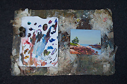 Josh Adam Palette and Painting, Schoodic Point, Acadia National Park, Mt. Desert Island, Maine, US