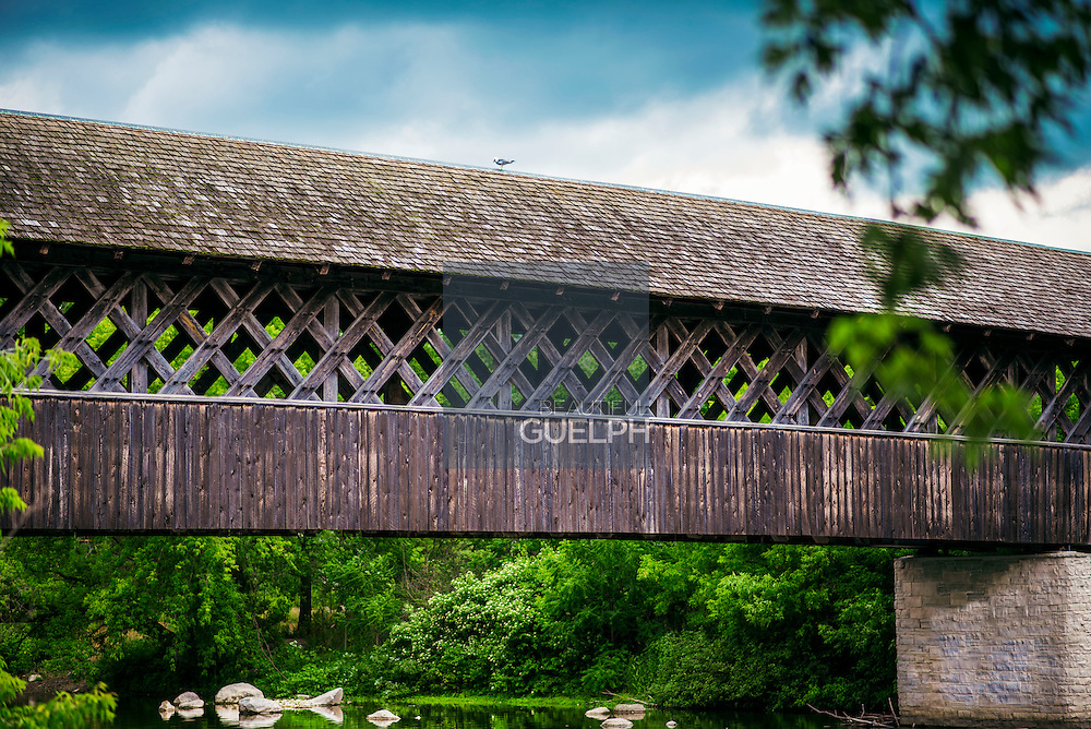 The covered bridge located where the speed and eramosa rivers collide, is a Guelph landmark. Photo by Claire Teri
