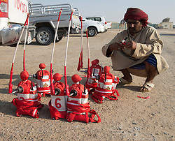 Robot remote controlled jockeys  at Dubai Camel Racing Club at Al Marmoum in Dubai United Arab Emirates