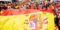 GEPA-2906087335A - WIEN,AUSTRIA,29.JUN.08 - FUSSBALL - UEFA Europameisterschaft, EURO 2008, Host City Fan Zone, Fanmeile, Fan Meile, Public Viewing. Bild zeigt Spanien-Fans auf dem Stephansplatz.<br />Foto: GEPA pictures/ Reinhard Mueller
