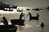 A busy ocean as the small conical boats head toward shore after being loaded with the night's catch.