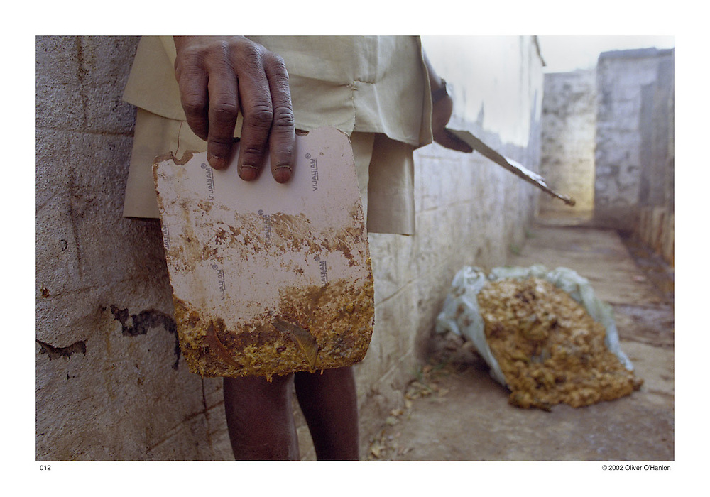 India. Andhra Pradesh. Ananthapur District. 2002. A Dalit man of the Madiga caste, who works as a manual scavenger, holds a small piece of chipboard covered in human faeces while cleaning a dry compartmental latrine. Manual scavenging is a caste-based occupation; reserved for the lowest of the Dalit sub-castes. Mainly a hereditary occupation; Dalits are forced to manually clean both private and public dry latrines (toilets with no flush system) and dispose of the excrement. Manual scavengers also traditionally dispose of animal carcasses for locals for menial pay or left over food. Mainly employed by local municipalities, manual scavengers are given no protective gear to carry out their work. This work is extremely hazardous; manual scavengers often suffer from respiratory diseases, gastrointestinal disorders and trachoma, a disease often resulting in blindness. Manual scavengers are considered to be the most oppressed and disadvantaged of any community. The practice has been long outlawed, however, continues today in most Indian states.