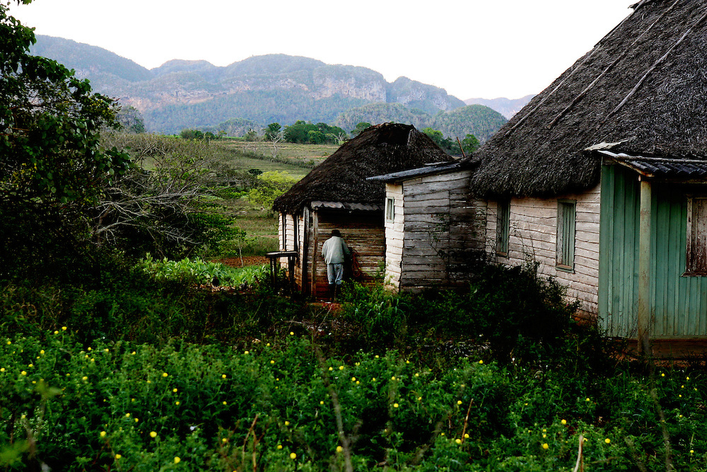 A man works on his property in the town of Vi&ntilde;ales, Cuba.<br />