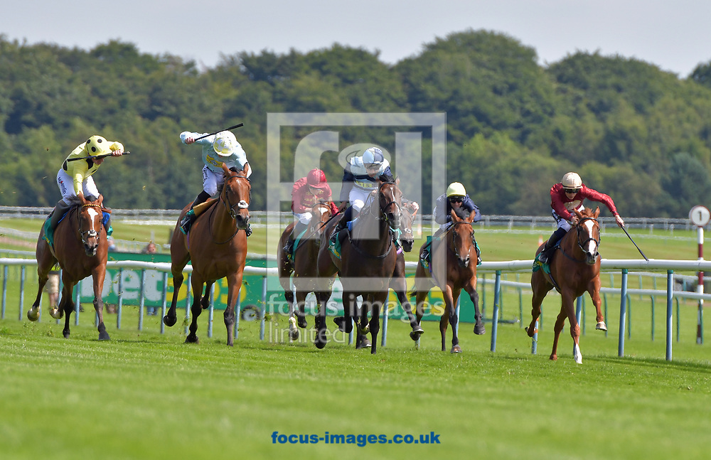 The Black Princess ridden by Robert Tart (dark and light blue segment cap) wins bet365 Lancashire Oaks  during the bet365 Old Newton Cup Day meeting at Haydock Park, Merseyside<br /> Picture by Martin Lynch/Focus Images Ltd 07501333150<br /> 08/07/2017