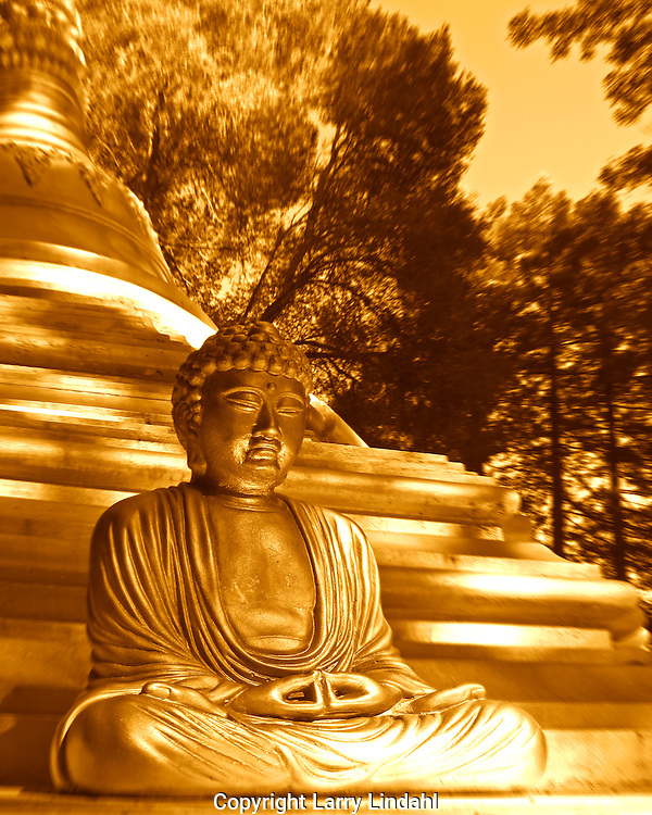 Buddah statue Northern California