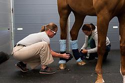 Werth Isabell, (GER), Bella Rose 2<br /> Alltech FEI World Equestrian Games™ 2014 - Normandy, France.<br /> © Hippo Foto Team - Leanjo de Koster<br /> 25/06/14