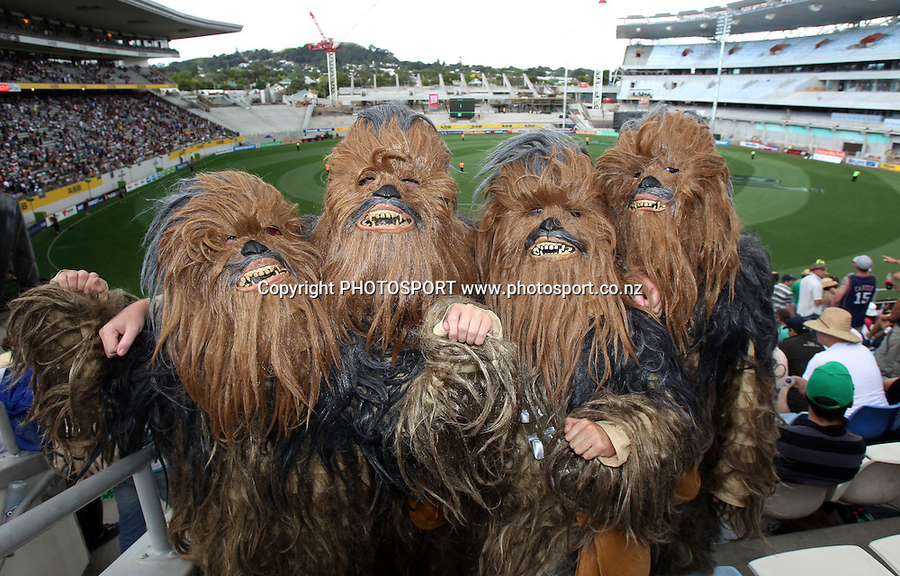 Cricket fans dress up as Chewbacca from Star Wars.<br />