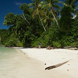 Beautiful white sandy beach with coconut trees.