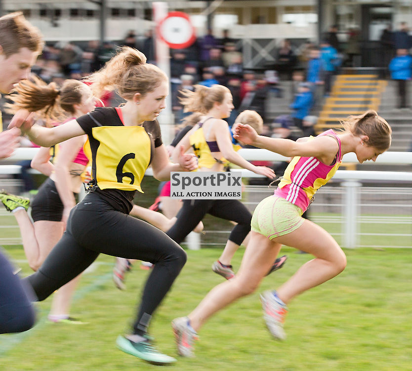 146th New Year Sprint 31 December 2014; athletics race at Musselburgh Racecourse, Musselburgh;