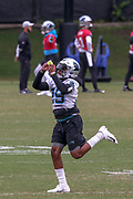 Carolina Panthers cornerback Corn Elder(29) catches a tennis ball in a drill during minicamp at Bank of America Stadium, Thursday, June 13, 2019, in Charlotte, NC. (Brian Villanueva/Image of Sport)