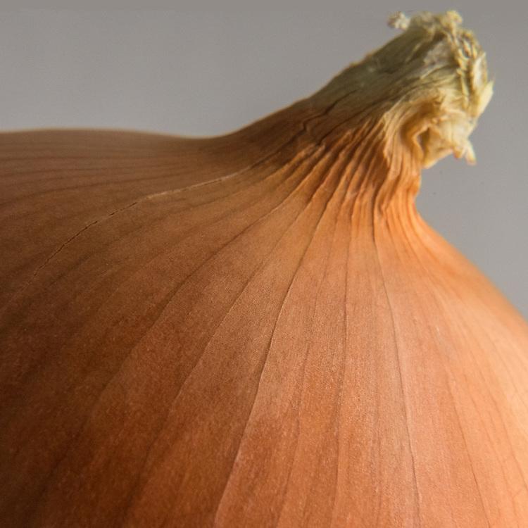 Onion, Vegetable,