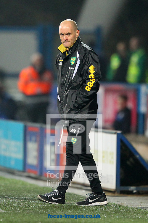 Norwich Manager Alex Neil during the Sky Bet Championship match at the John Smiths Stadium, Huddersfield<br /> Picture by Paul Chesterton/Focus Images Ltd +44 7904 640267<br /> 17/03/2015