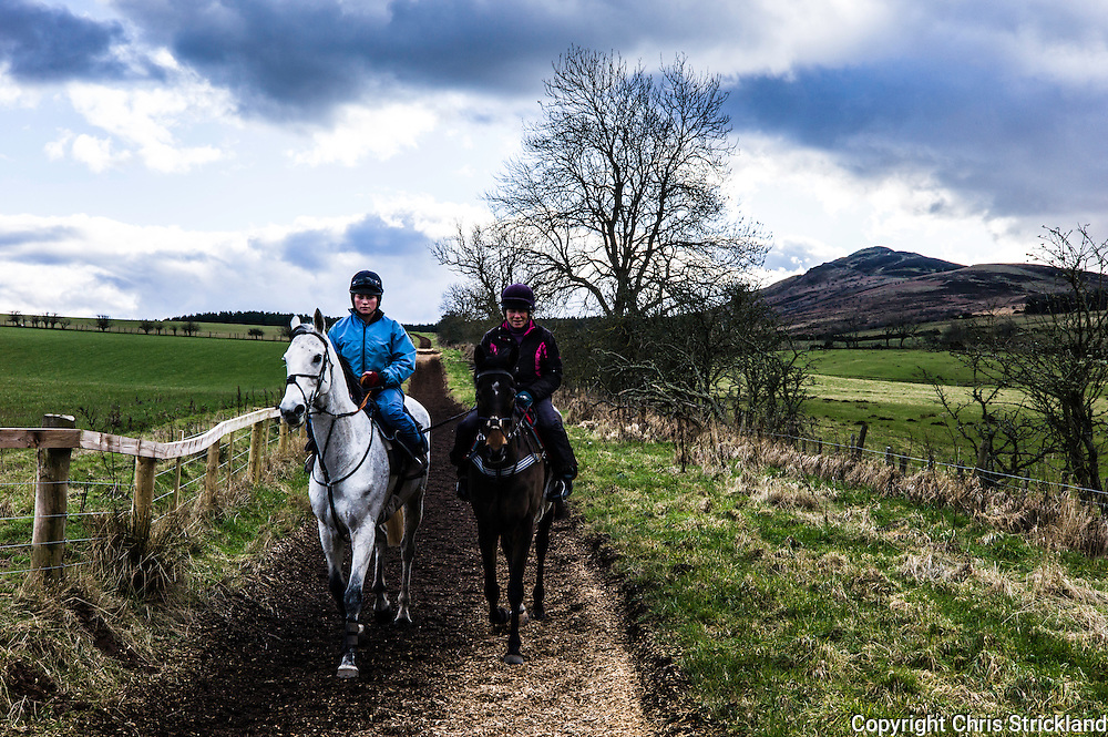 Denholm, Hawick, Scottish Borders, UK. 23rd February 2016. Jockey Joanna Walton puts National Hunt racehorse Carters Rest (left) through his paces on the gallops with Ruberslaw hill as a backdrop with trainer Di Walton riding Point to Pointer Oscar Stanley.