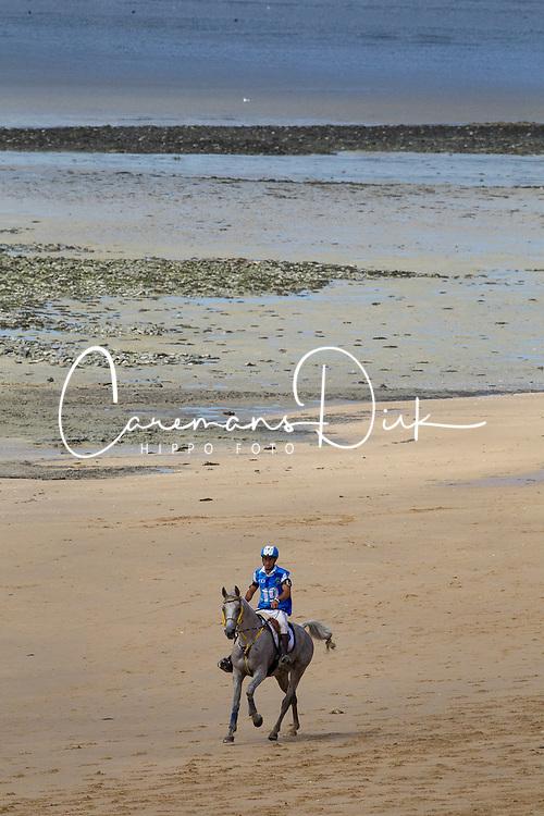 Domingo Andres Cordoba, (ARG), Koela De La Dour<br /> Alltech FEI World Equestrian Games™ 2014 - Normandy, France.<br /> © Hippo Foto Team - Leanjo de Koster<br /> 25/06/14