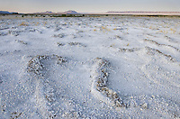 Mineral desposits on dry lakebed, Alvord Desert Oregon