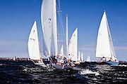 Dorade, Cherokee, Madcap, and Robin racing in the Sail For Pride regatta.
