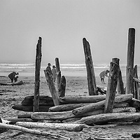 Images of the beach at Tofino, on the west coast of Vancouver Island, Canada. The days were foggy constantly, but the atmosphere made for moody and beguiling photos.
