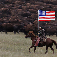 Phill Randall carries the American flag as wranglers work to control the herd as they move toward the corral area Friday, Sept. 27, 2013 at the annual bison roundup at Custer State Park in South Dakota. The park's bison are rounded up from all corners and herded into corrals where they'll be vaccinated, branded and sorted for an auction in November.