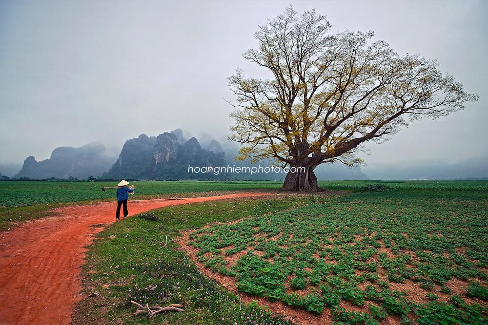 Vietnam Images-Landscape-People-Nature-Quang Binh phong cảnh việt nam