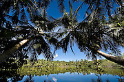 """""""Fresh Water"""" lake on Vilingili, Gan. Maldives."""