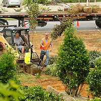 Thomas Wells | Buy at PHOTOS.DJOURNAL.COM<br /> Crews with Sportsman Lawn and Landscaping begin unloading truck loads of trees and other shrubs and landscaping for the new Tupelo Police Headquarters on Front Street Wednesday.