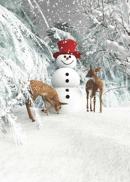 Two deer have approached a snowman in the woods. This is a magical image, to be sure. At the same time, it is also an image that can easily stir the imagination. We look at the deer, and we can't help but wonder what they might be thinking about. We see that they are completely absorbed in the presence of this snowman. The snowman doesn't seem to be too bothered by their presence either. We don't know what the deer are going to do next, but we would like to imagine that they will leave this appealing snowman where he is. BUY THIS PRINT AT<br />