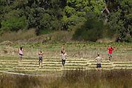 2013 Spartan Race. Australia Adventure Racing. Melbourne, Victoria, Australia. 02/03/2013. Photo By Lucas Wroe