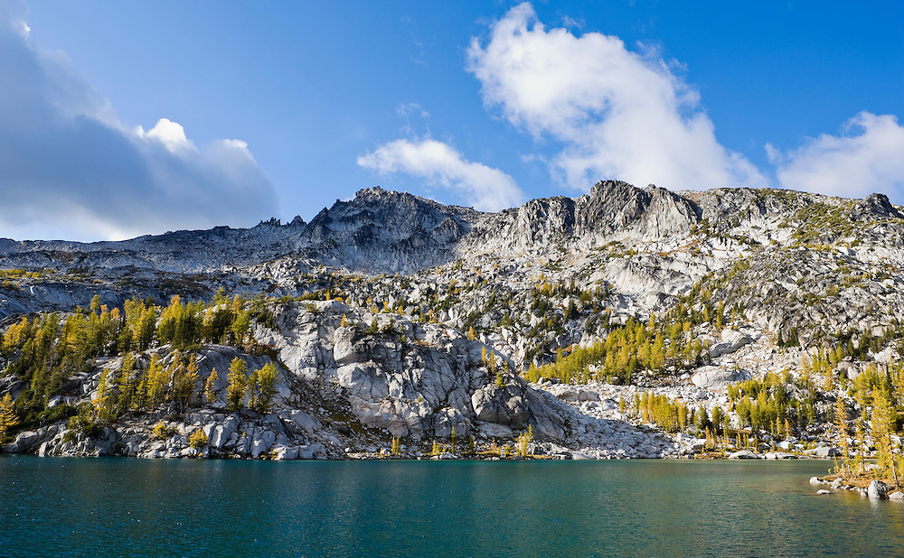 Larch trees changing their colors in Fall on the Enchantment Peaks above Perfection Lake, Enchantment Lakes Wilderness Area, Washington Cascades, USA.