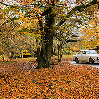 Car 53 Peter Williams / Andy Darlington