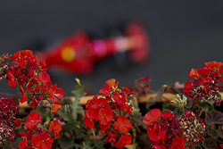 April 29, 2018 - Baku, Azerbaijan - Motorsports: World Championship; 2018; Grand Prix Azerbaijan, Grand Prix of Europe, Formula 1 2018 Azerbaijan Grand Prix, . , #5 Sebastian Vettel (GER, Scuderia Ferrari) (Credit Image: © Hoch Zwei via ZUMA Wire)