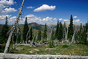 The Bob Marshall Wilderness in the Lewis & Clark National Forest of Montana