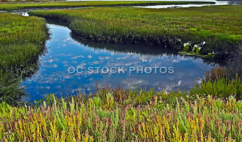 Scenic Landscape Of Back Bay In Newport Beach