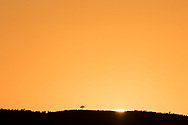 First edge of sun over ridge, Africa, © 2019 David A. Ponton