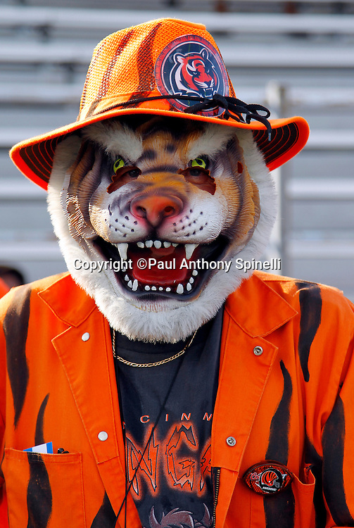 A Bengals fan wears a cat mask and costume prior to the NFL Pro Football Hall of Fame preseason football game between the Dallas Cowboys and the Cincinnati Bengals on Sunday, August 8, 2010 in Canton, Ohio. The Cowboys won the game 16-7. (©Paul Anthony Spinelli)
