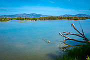 Estany del Cortalet, Aiguamolls de l'Empordà Natural Park, the 2nd most important wetland area in Catalonia.