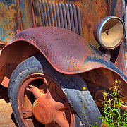Old Ford Reclaimed By Nature - Motor Transport Museum - Campo, CA
