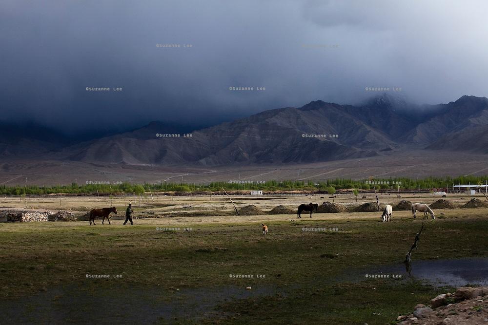 Scenery around Leh, Ladakh..*Pre-season Jeep road trip from Delhi to Amritsar, Srinagar, Kargil, Lamayuru, Leh, Khardung La, Tso Moriri and back to Delhi in May 2010. Photo by Suzanne Lee