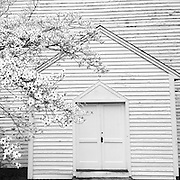 Gary Cosby Jr.  iPhone photographs<br /> Mooresville Church of Christ and white dogwood tree in Mooresville, Alabama.