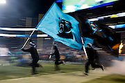 January 24, 2016: Carolina Panthers vs Arizona Cardinals. Panthers flags