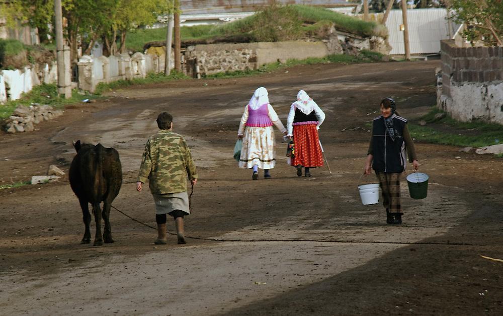 Doukhobors and Armenians in Gorelovka.....Doukhobors et armeniens a Gorelovka.