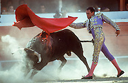 Bull fighting in Tijuana, Mexico.